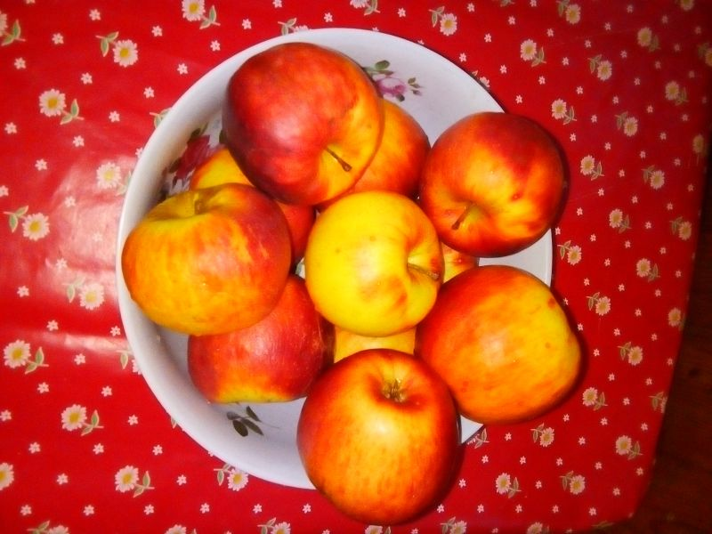 Fructe - mere