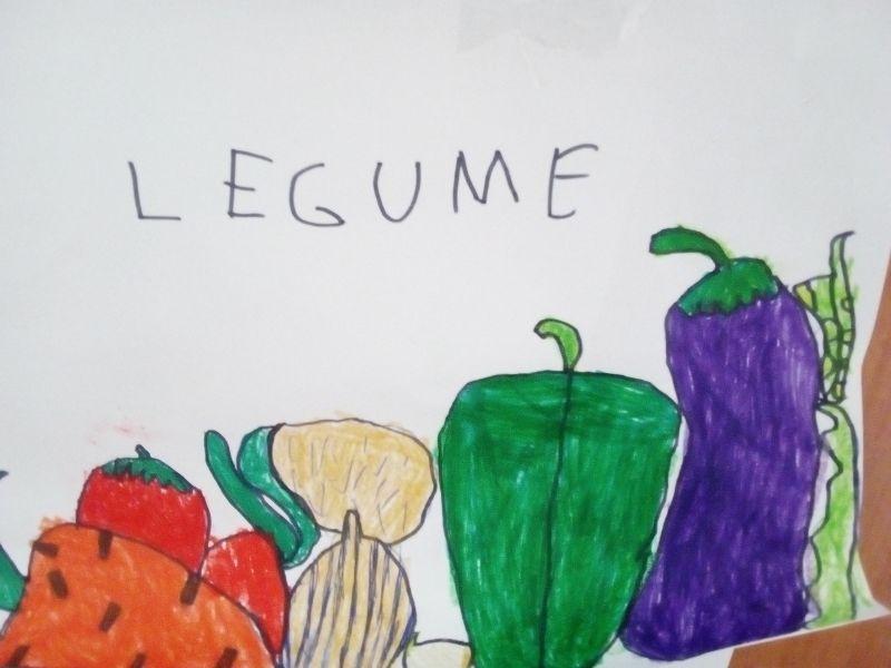 Legume - Gemuse