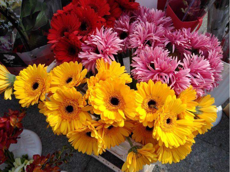 Buchet cu gerbera - Bouquet de gerbera