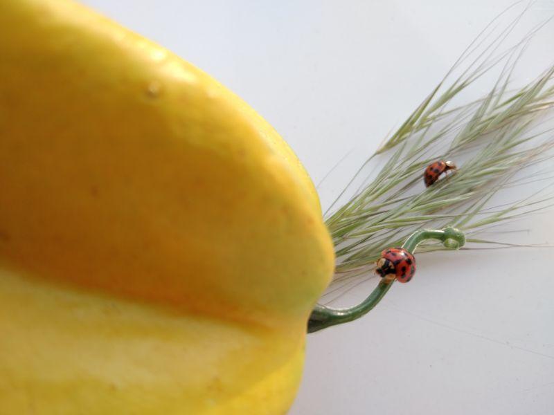 Buburuza și fructele