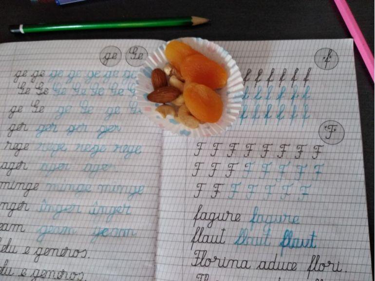 Premierea cu fructe pentru caietul scris