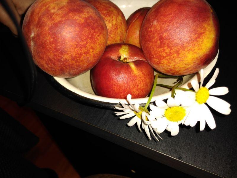 Flori și fructe din sezon de vară
