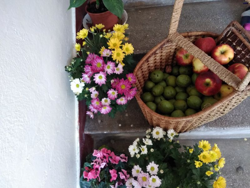 Obstgarten - Livada