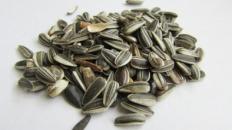Semințele de floarea soarelui – beneficii și proprietăți