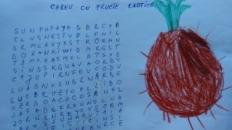 Careu cu fructe