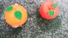 Fructe în zăpadă
