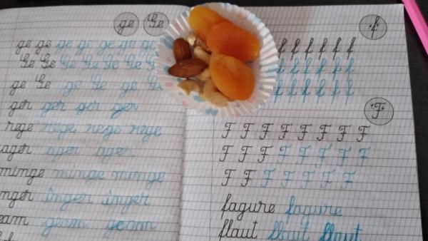 Premierea caietului cu fructe