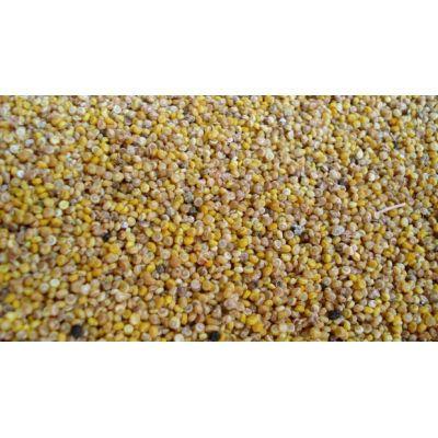 Quinoa albă - 100 grame