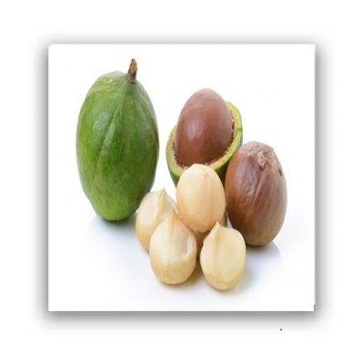 Nuci macadamia - 100 grame